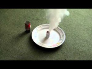 flea bomb